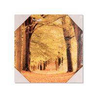Zidna slika 30x30cm - FC300738