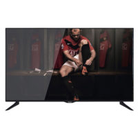LED UHD TV Panasonic TX-40CX300E